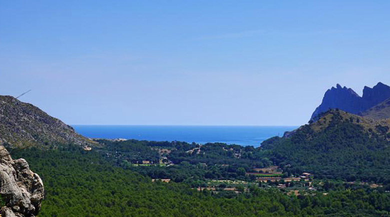 News about holiday rentals in Mallorca, what should you know?